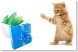 pawsitive gifts