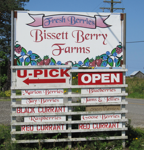 Bisset farms